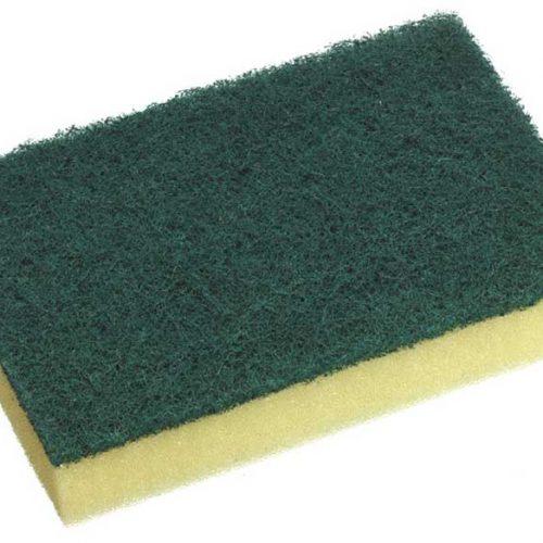 Sponges & Scourers